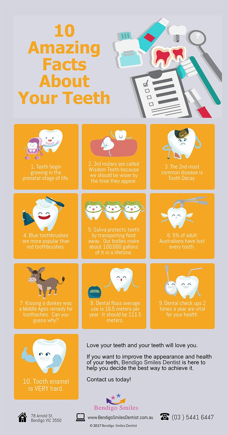 bendigo smiles dentist 10 incredible facts about your teeth that you didnt know before p
