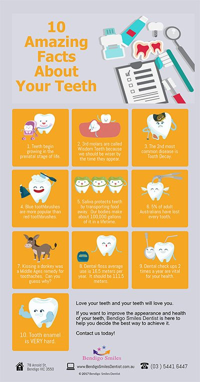 Bendigo Smiles Dentist | 10 Incredible Facts About Your Teeth That You Didnt Know Before P |Dentist Bendigo